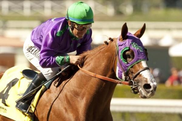 kentucky derby horse