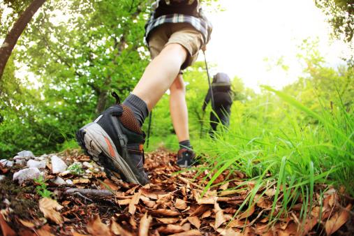 blog-hiker