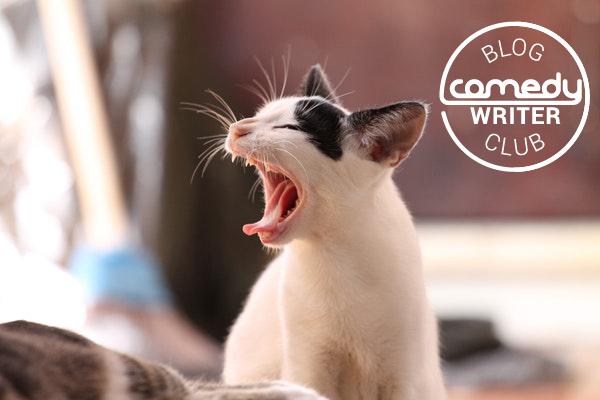 Cat videos memes content marketing