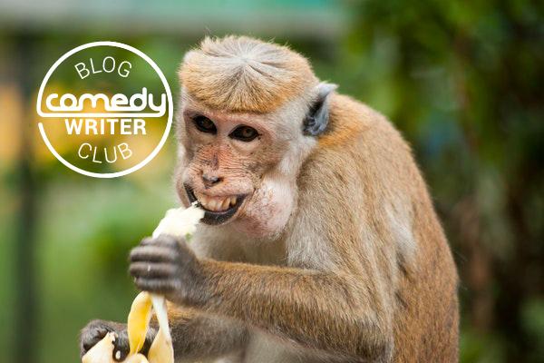Monkey catcher marketing model