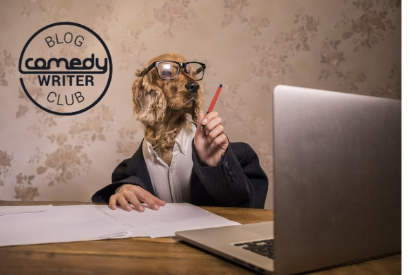Funny automatic essay writer
