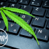 Pot Talk: How to Speak in Cannabis and Avoid Potshot Content